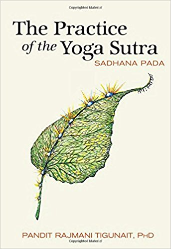 The Practice Of The Yoga Sutras Jeff Masters